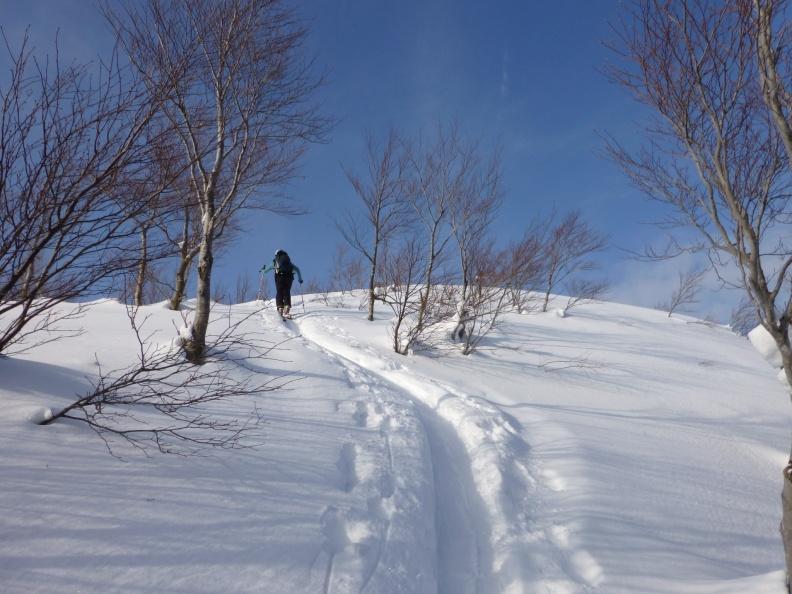 Skiing Genampoh (銀杏峰) and 志目木谷 in Fukui prefecture
