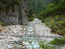 That is another hanging bridge one has to cross to reach the mushroom and the other area. That one is even more shaky.