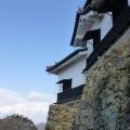 P1010037.JPG -- The fortress walls of Hikone-jo