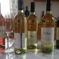 IMG_2185.JPG -- Wine tasting at my favorite producer