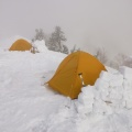 P1020125.JPG -- In total there were five tents on this evening - a lot for a rather demanding ridge