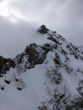 Higher on the ridge vegetation slowly retreats and real alpine feeling begins