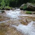 P1030419.JPG -- Clear water