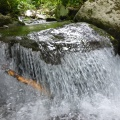 P1030524.JPG -- Water cascading down