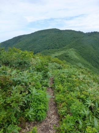 View onto Dainichi