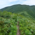 P1030540.JPG -- View onto Dainichi