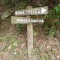 2013-11-04 047.JPG -- Entrance to the steep path