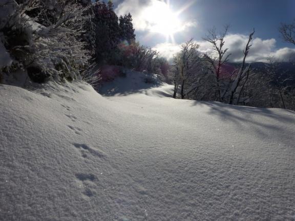 山スキー マルツノボリ山