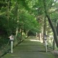Photo 2014-06-15 17 47 58.jpg