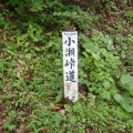 2014-06-28 20140628五箇山美ヶ谷 046.JPG -- Back on the forest road