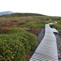 P1000324.JPG -- The path through Midagahara below Murodo