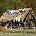 P1000543.JPG -- Renewing the roof