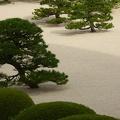 P1000773.JPG -- Adachi Museum of Art (and Garden) 足立美術館