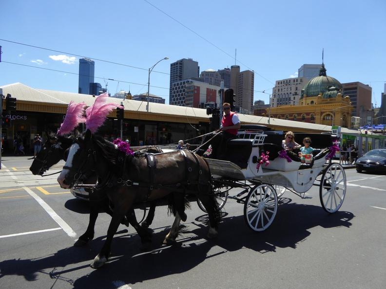 Fiaker in Melbourne - strange
