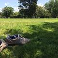 Photo 2014-12-17 14 07 18.jpg -- Greens gardens invite to bare feet walking