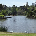 P1000916.JPG -- Melbourne Royal Botanical Gardens