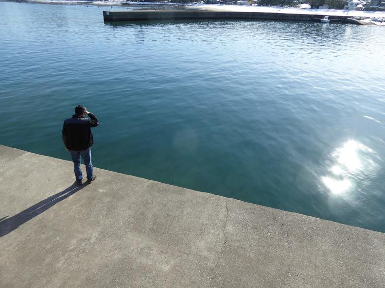 Fish spotting