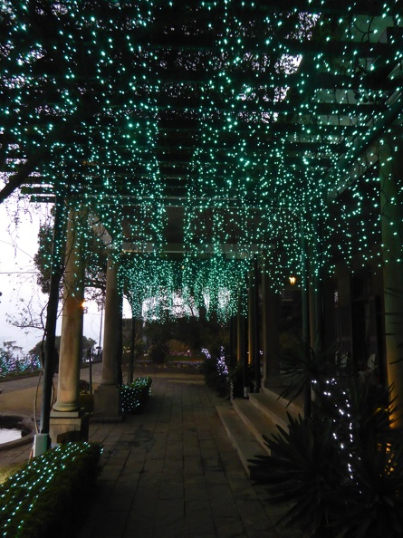 Light up in Glover garden
