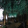 P1010186.JPG -- Light up in Glover garden