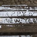 P1010243.JPG -- Happy New Year 2015