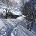 Photo 2015-01-18 12 06 07.jpg -- On the ridge