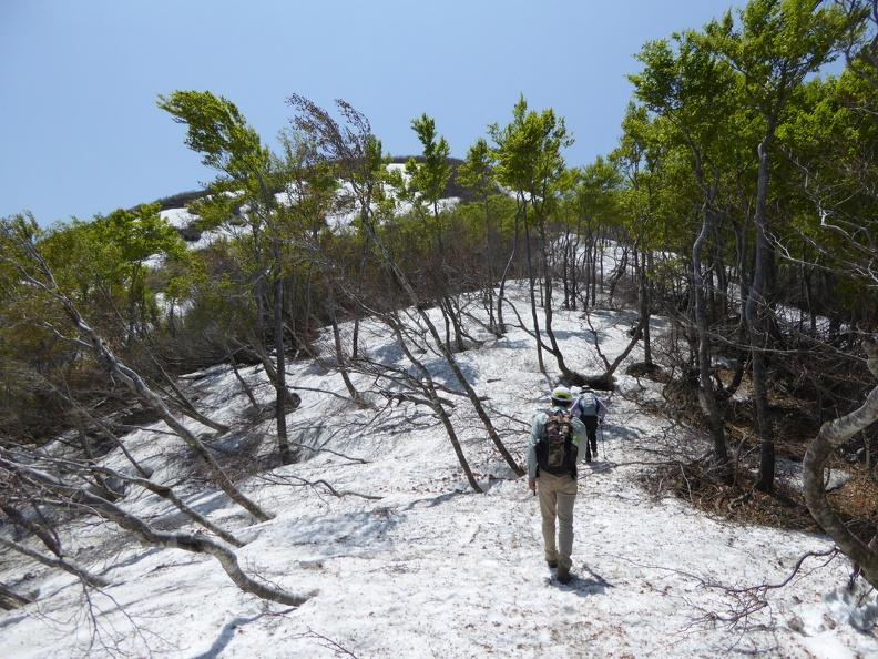 Along the ridge from Suzugadake to Mt. Dainichi