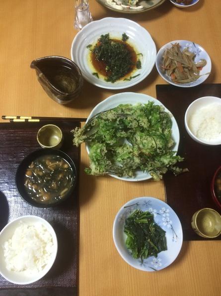 Koshiabura tempura, koshiabura sautee, fresh koshihikari-rice, Sake, mushroom miso soup. Perfect!