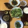 Photo 5-10-15, 8 20 35 PM.jpg -- Koshiabura tempura, koshiabura sautee, fresh koshihikari-rice, Sake, mushroom miso soup. Perfect!