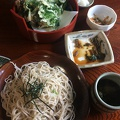 Photo 5-17-15, 12 11 24 PM.jpg -- Sansai tempura and Zarusoba ... already lunch is a feast