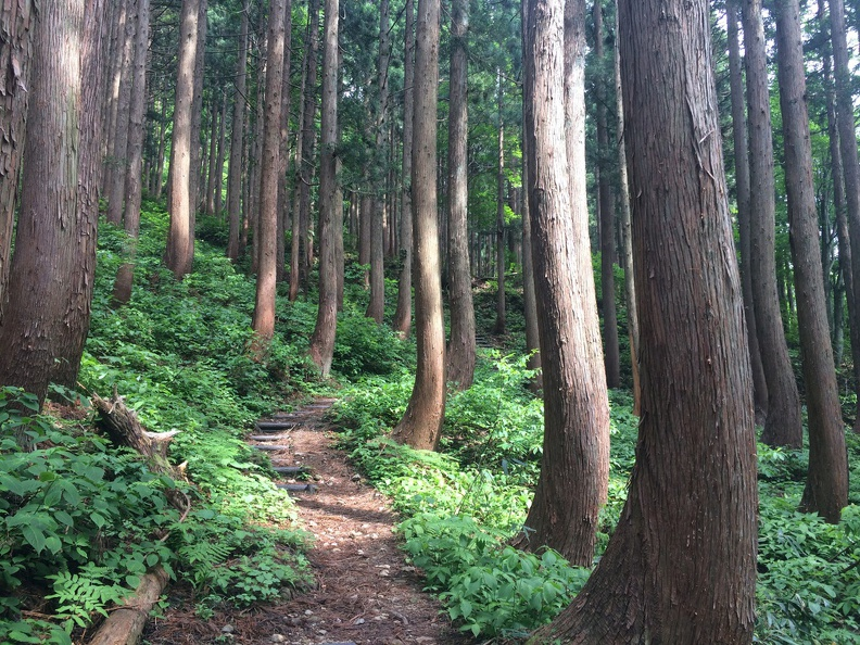 The hiking path to Byogadake