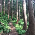 photo 6-13-15, 2 22 02 pm.jpg -- The hiking path to Byogadake