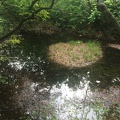 photo 6-13-15, 2 31 54 pm.jpg -- Tenike 天池