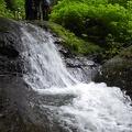 P1020447.JPG -- Water impressions