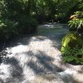 021.JPG -- Sun lit and water overflowed rock slabs