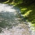 P1020723.JPG -- Slabs in the upper part of the creek