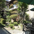 P1030032.JPG -- Backyard and garden