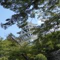 P1030076.JPG -- Castle between leaves
