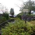 P1030662.JPG -- Soba place in Fukui, Sabae