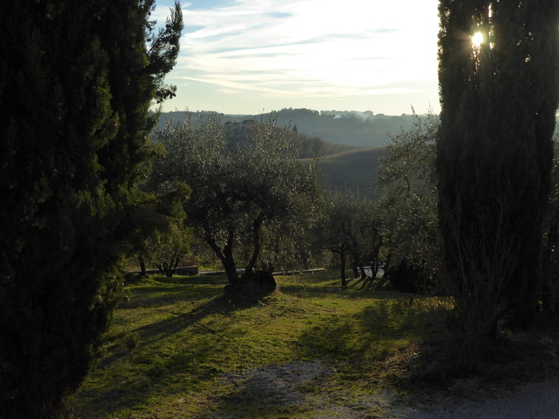 In the hills of Pontignano