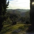 P1030741.JPG -- In the hills of Pontignano