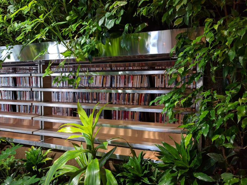Wall of Green in the middle of the library