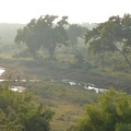 -- Lovely warm light bathing the landscape at Kruger National Park