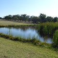 -- Ponds along the golf course of the hotel
