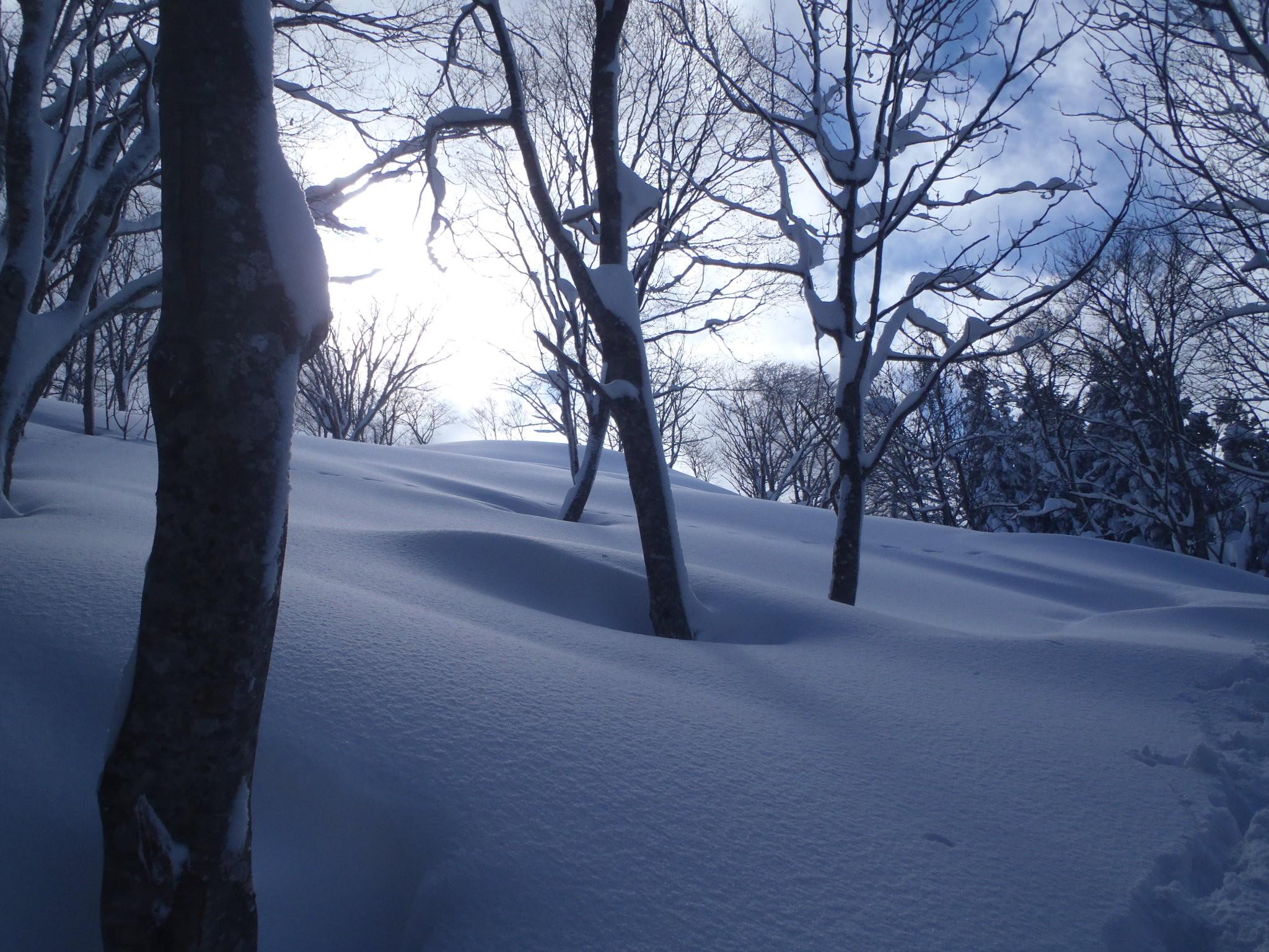 山スキー:御世仏山 (Ski tour Miyobutsu-san)